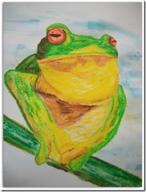 Tree Frog by Suzanne Broadhurst