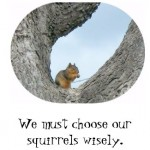 choose_your_squirrels_wisely