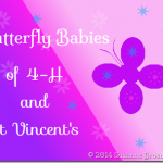 Butterfly-Babies-of-4H-and-St-Vincents-with-stars.png