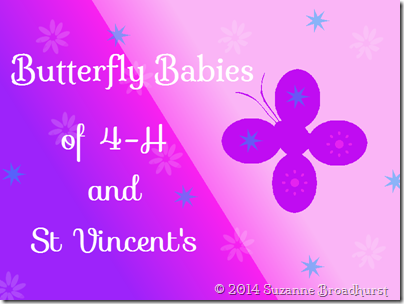 Butterfly Babies of 4H and St Vincent's
