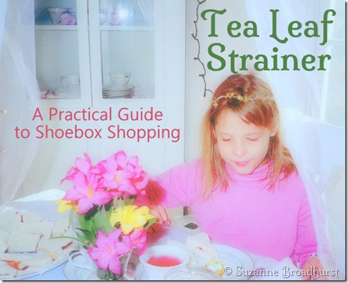Tea Leaf Strainer_Practical Guide for Shoebox Shopping