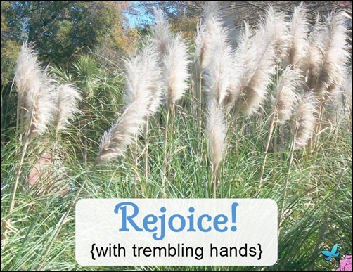 Rejoice with Trembling Hands
