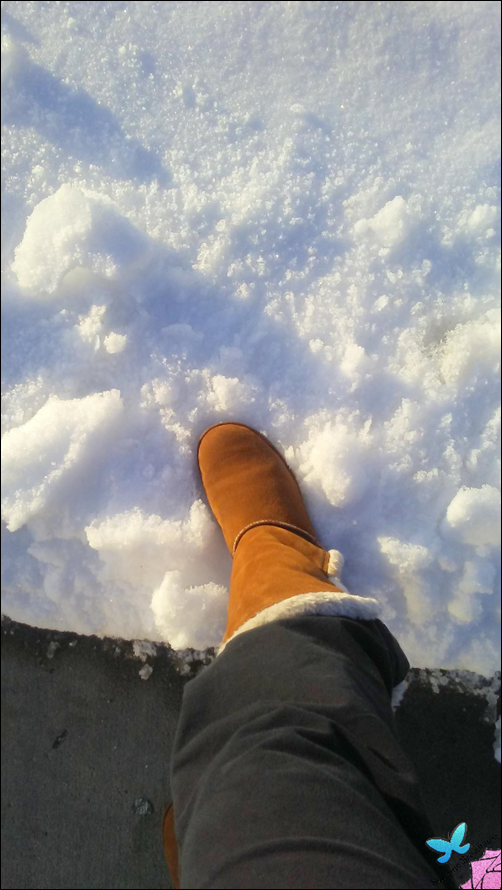 Boot in the Snow[3]