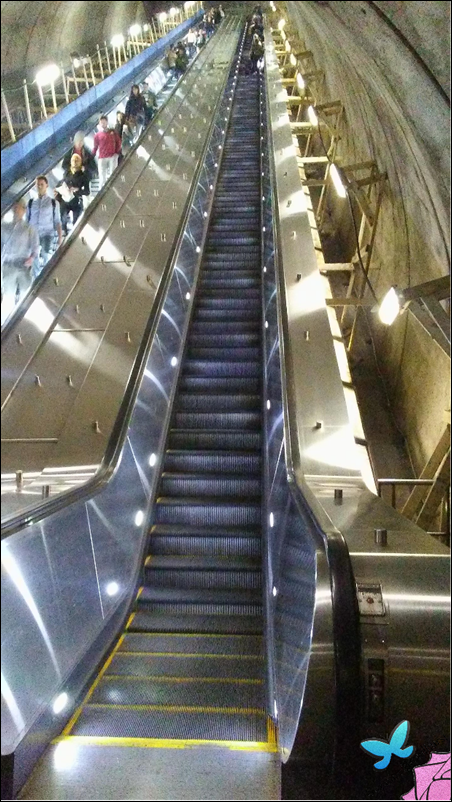 Facing Escalator Fears