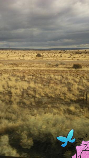 Out West a