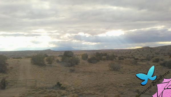 Out West b